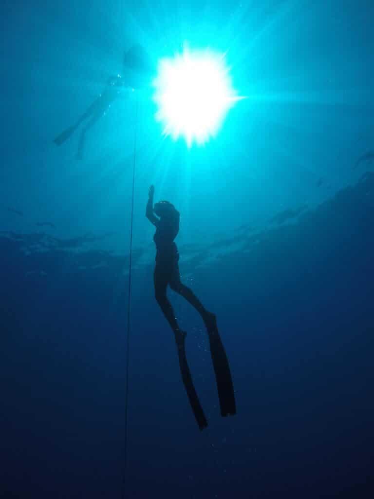 קורס צלילה חופשית צולל חופשי עולה אל פני המים