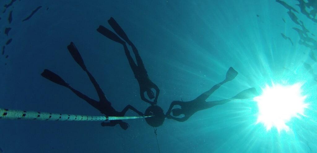 צוללים מחזיקים מצוף צלילה
