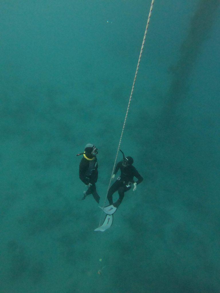 אימון ים בקורס צלילה חופשית