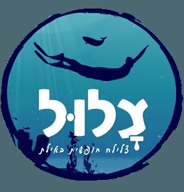 הלוגו של צלול