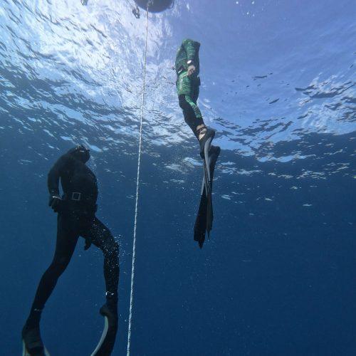 אימון צלילה חופשית